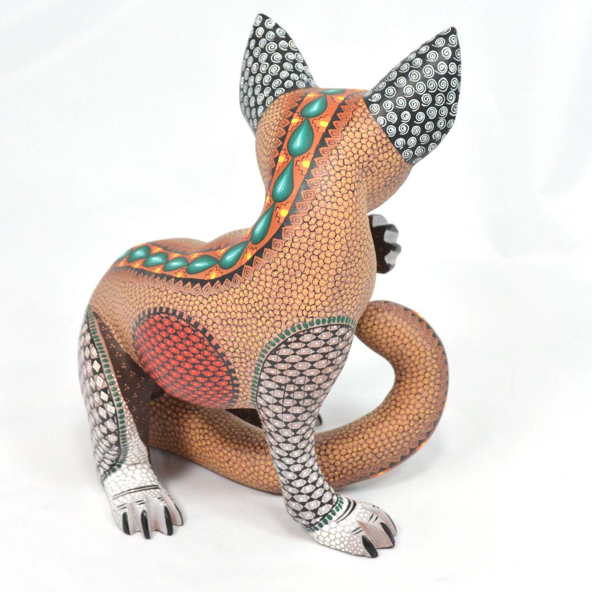 Eduardo Fabian Eduardo Fabian: Coyote Coyotes