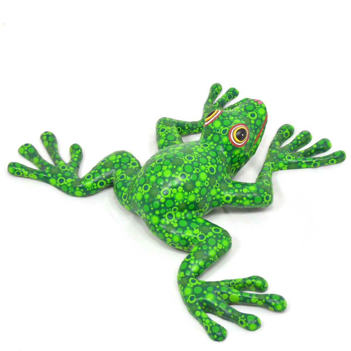 Azucena Santiago Azucena Santiago: Frog Frog