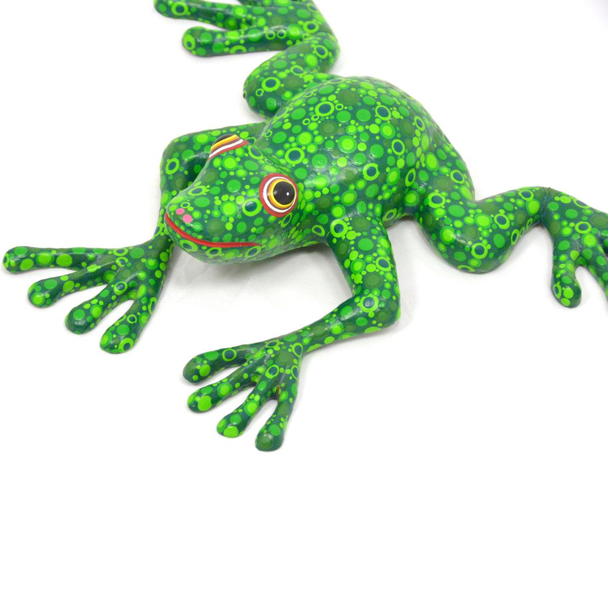 Azucena Santiago: Frog