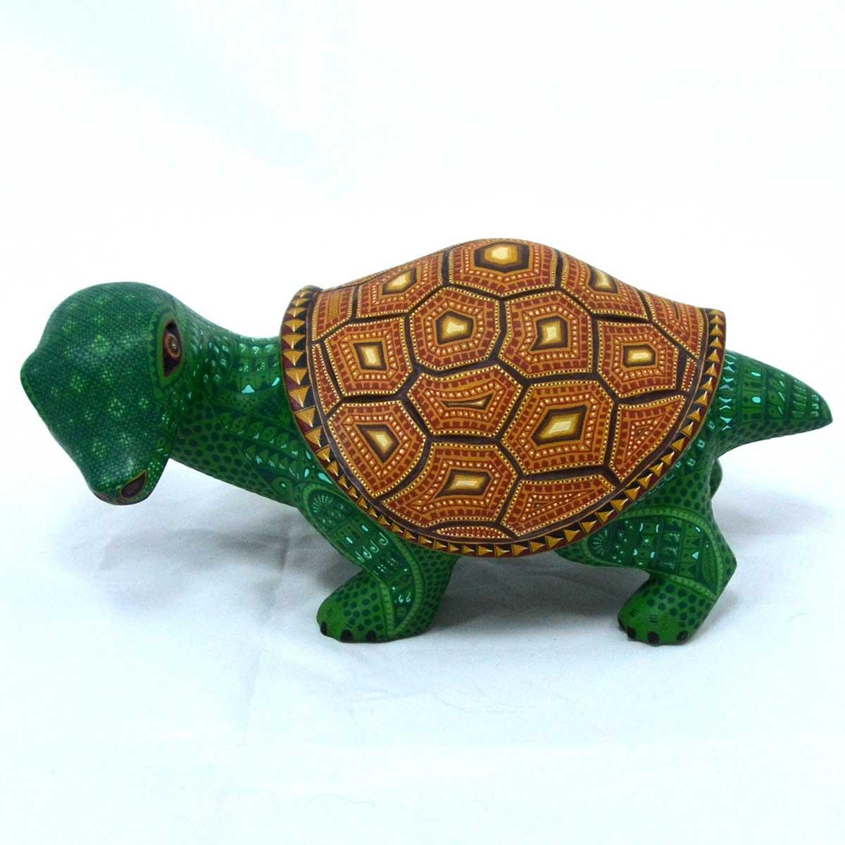 Jacobo and Maria Angeles: Turtle