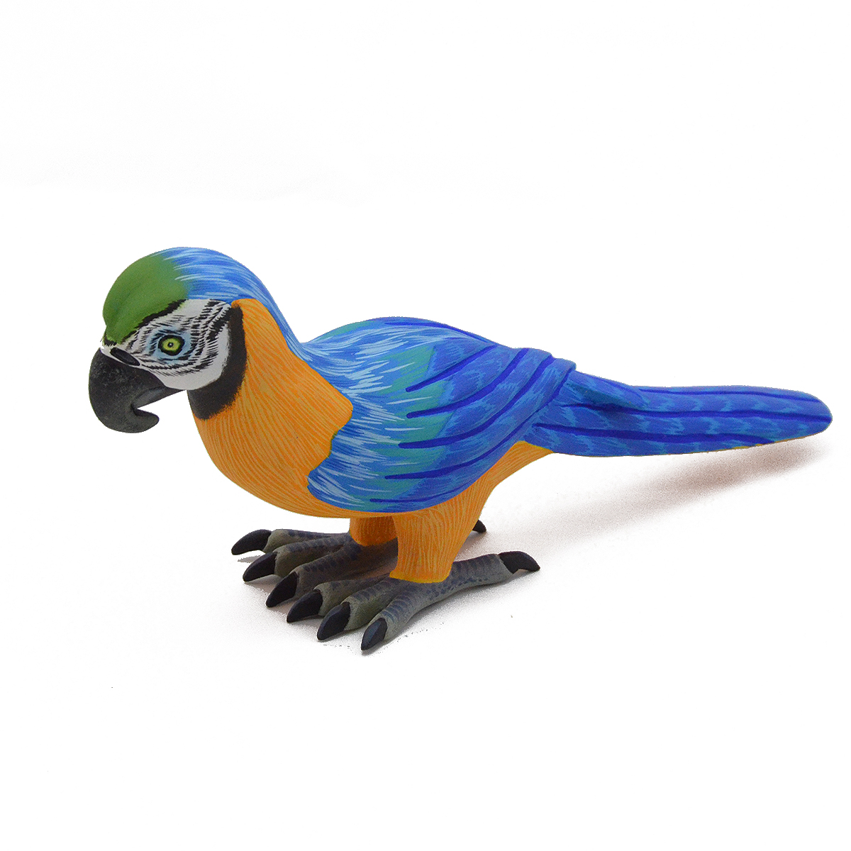 Eleazar Morales Eleazar Morales: Parrot Birds