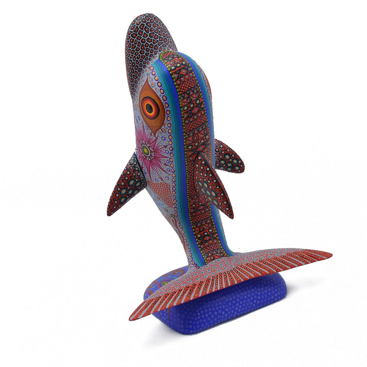 Luis Sosa Calvo Luis Sosa Calvo: Dolphin Dolphins