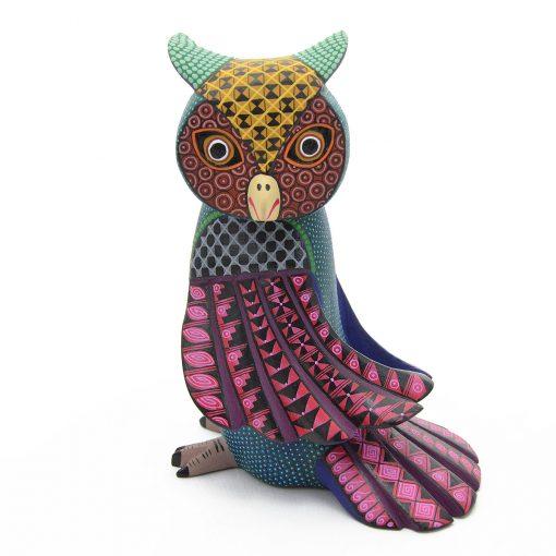 Eduardo Fabian Eduardo Fabian & Daniela Hernandez: Medium Owl Birds