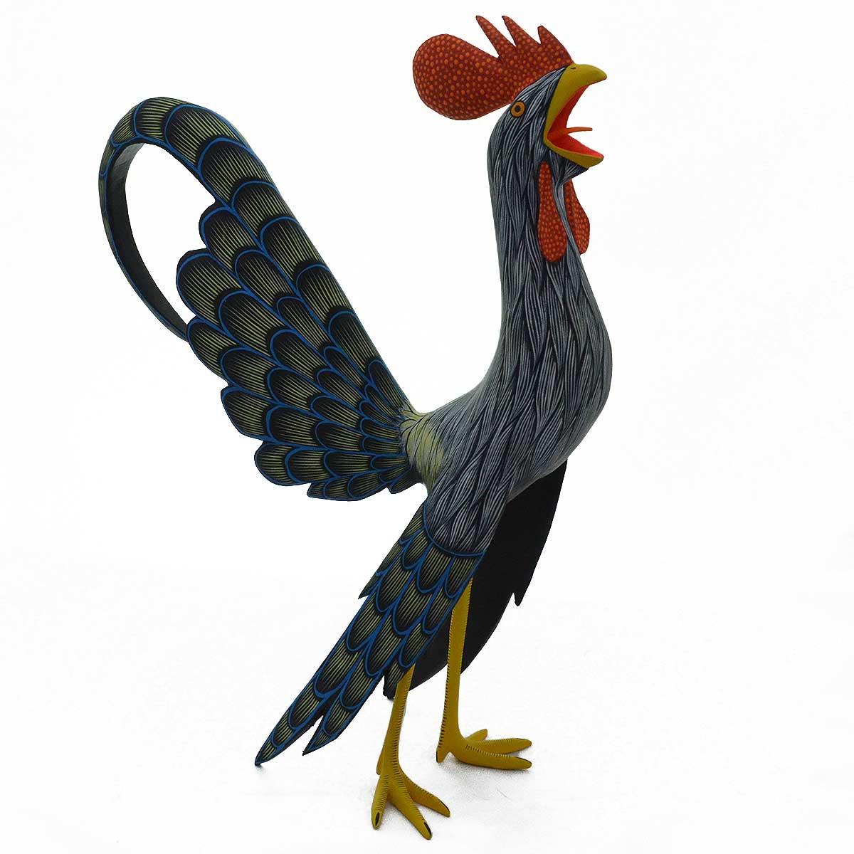 Raul Ibanez: Medium Rooster Black Tail