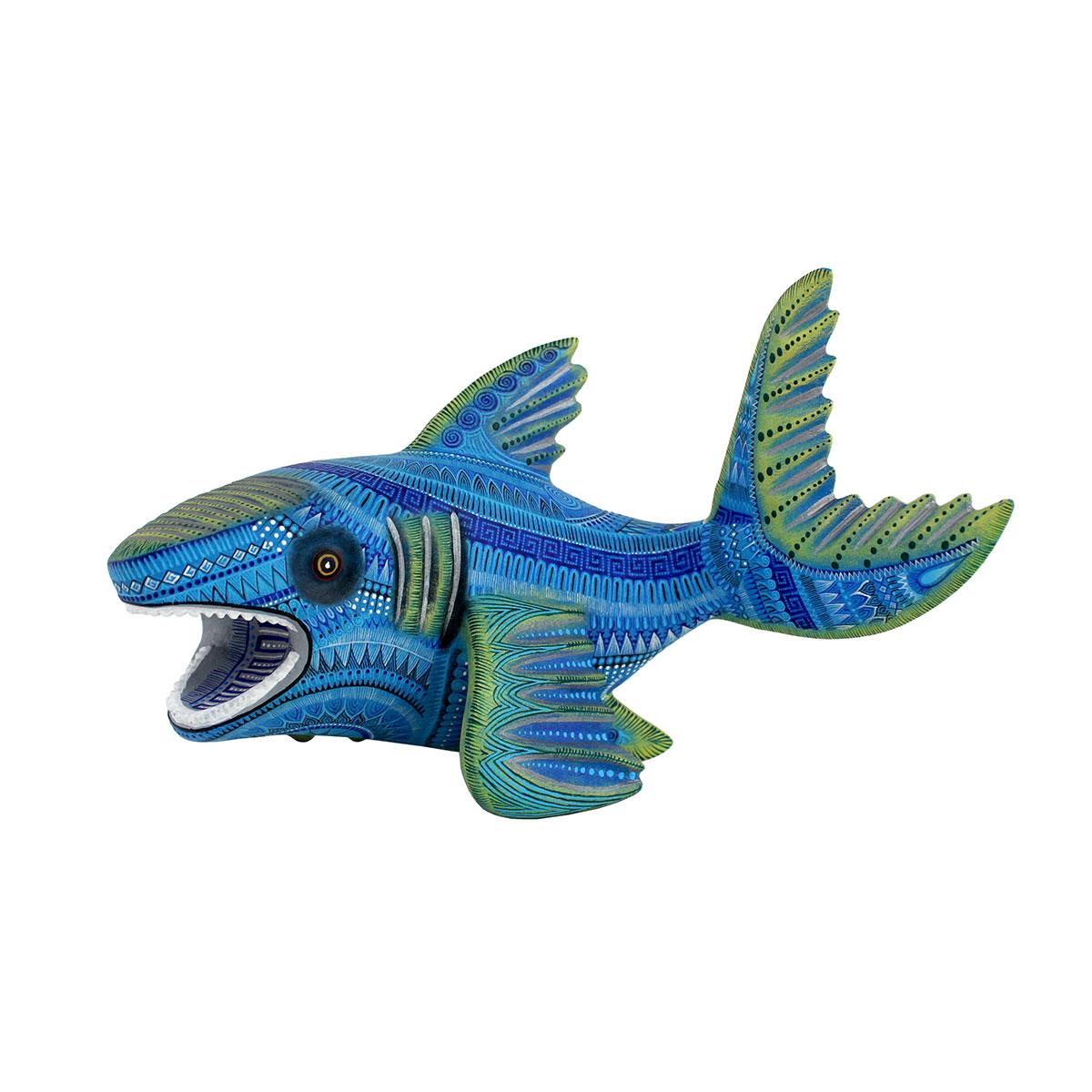 Oscar Fabian Melchor Oscar Fabian Melchor: Med Fine Shark Sea life
