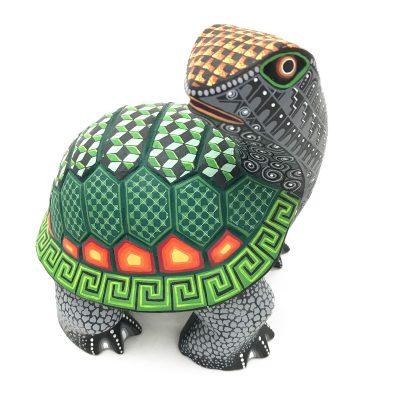 Eduardo Fabian Eduardo Fabian & Elvis Canseco: Turtle Turtles