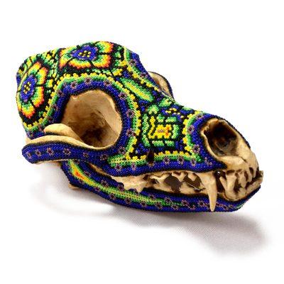 Wixárika (Huichol) Art OctavianoVilla Lopez : Micro Bead Blue Coyote Skull Beaded