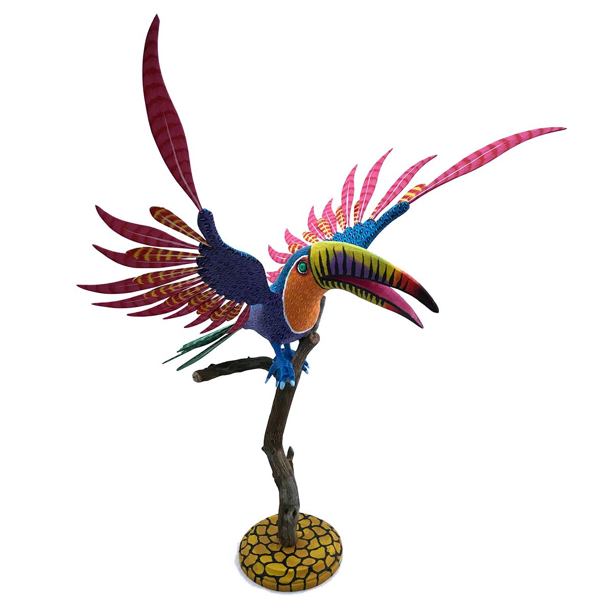 Eleazar Morales Eleazar Morales: Large Toucan on Branch Birds