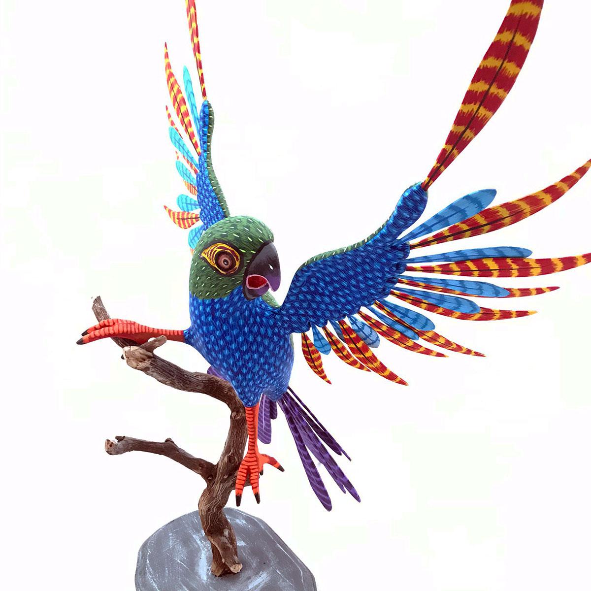 Eleazar Morales Eleazar Morales: Large Parrot on Branch Birds