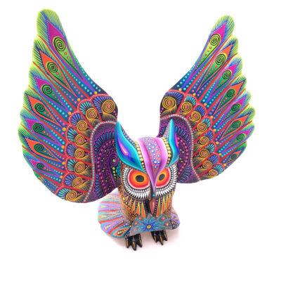 Luis Sosa Calvo Luis Sosa Calvo: Large  Spreadwing Owl Birds