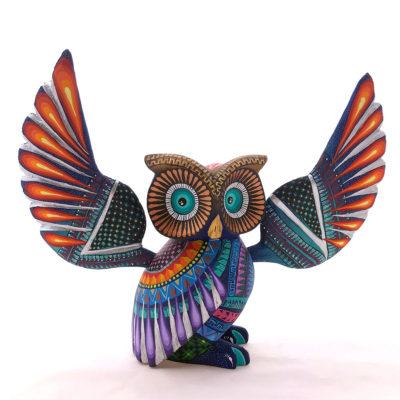Ivan Fuentes & Mayte Calvo Ivan Fuentes & Mayte Calvo: Owl Birds