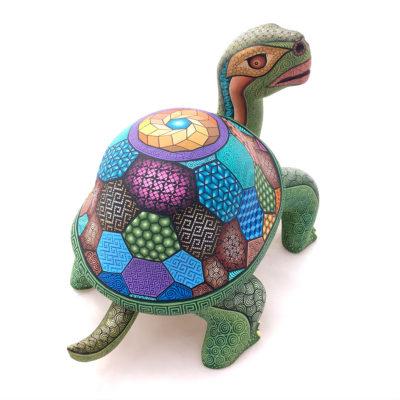 Magaly Fuentes & Jose Calvo Magaly Fuentes & Jose Calvo: Collector Showcase Turtle Reptiles & Amphibians