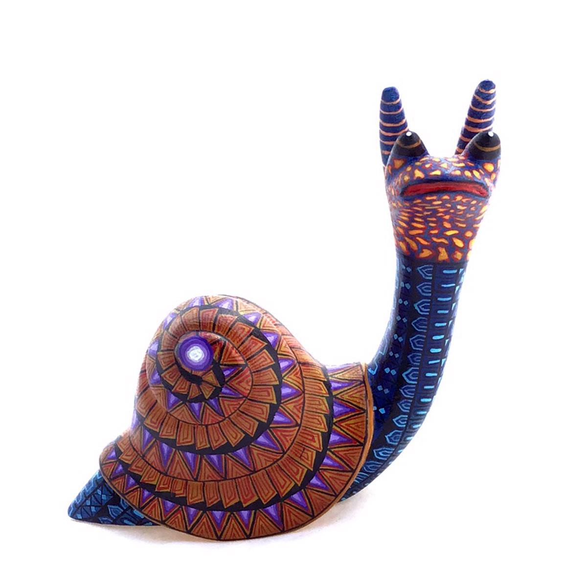 Esmeralda Cruz Sosa Esmeralda Cruz Sosa: Snail shelled gastropod
