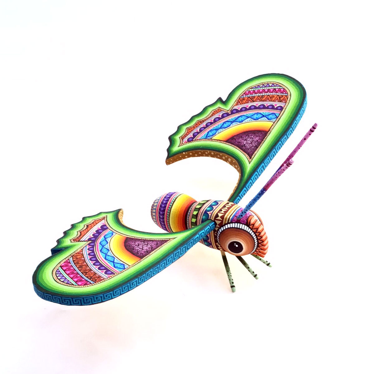 Magaly Fuentes & Jose Calvo Magaly Fuentes & Jose Calvo: Colorful Butterfly butterflies