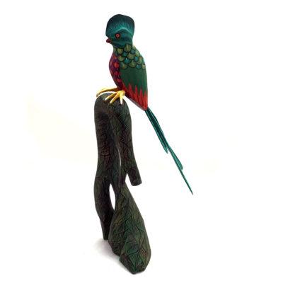 Eleazar Morales Eleazar Morales: Quetzal Bird Birds