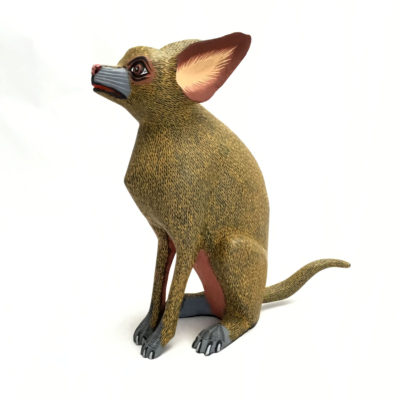 Eleazar Morales Eleazar Morales: Chihuahua Dog Chihuahua