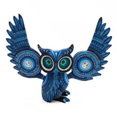 Ivan Fuentes & Mayte Calvo Ivan Fuentes & Mayte Calvo: Blue Owl Birds