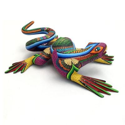 Magaly Fuentes & Jose Calvo Magaly Fuentes & Jose Calvo: Larger Colorful Lizard Lizards